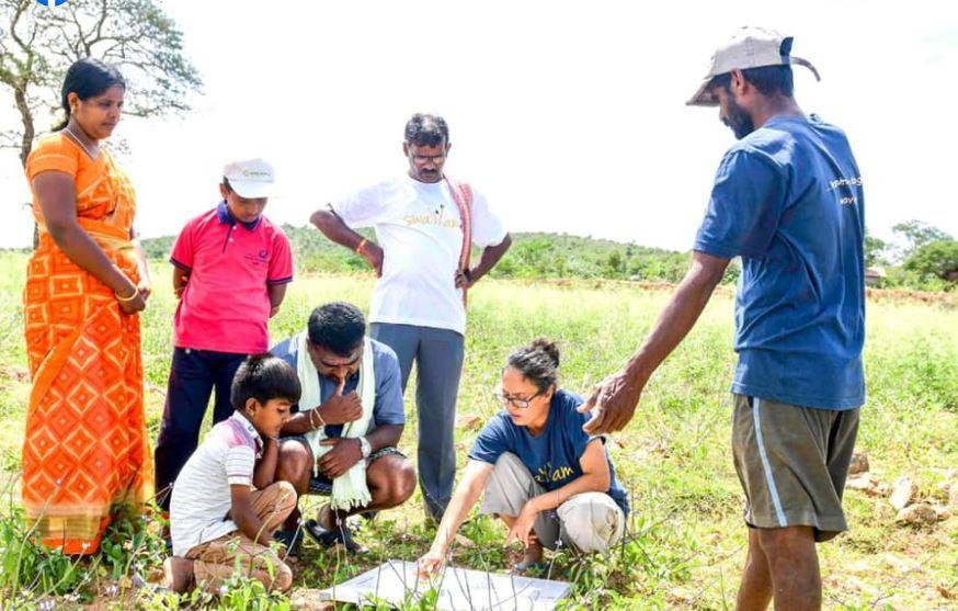 1000 Tree Project