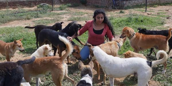 Providing unconditional love to special needs pets – Motivational story of Tails of Compassion