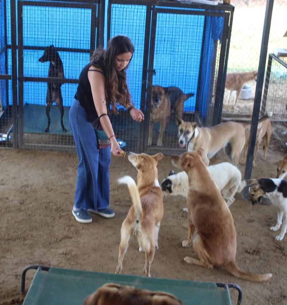 Tails of Compassion Trust