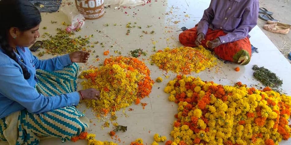 Three startup companies that recycle floral waste of temples, Innovative idea to make eco-friendly products